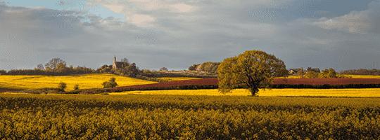 GB Farmland