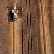 Global agricultural returns are set to continue