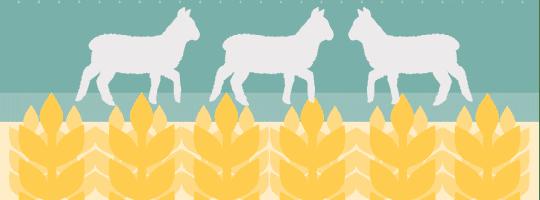 UK Agricultural Land