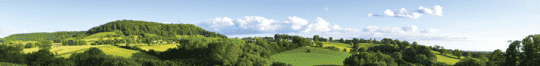 Agricultural Rent Survey