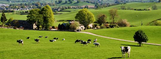 UK Farmland Market - Q3