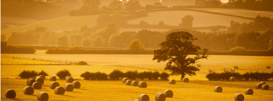 MIM: Farmland Market Q3