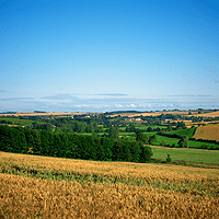 The UK Farmland Market