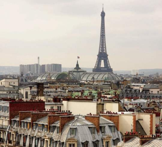 Prime market in Paris is driven by French buyers