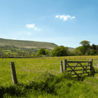 UK Farmland