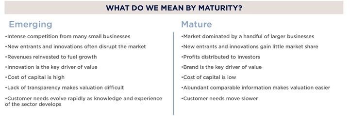 What do we mean by maturity?